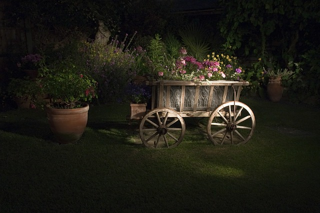 amenajare gradina rustica cu lemn alma parchet
